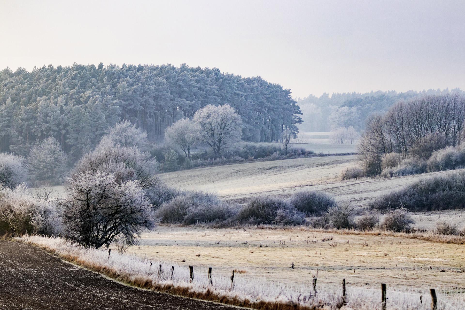 Winterlandschaft bei Lüneburg